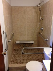 bath shower with grab bar